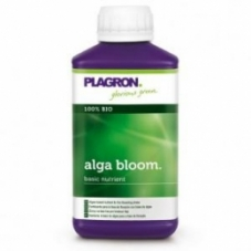 alga_bloom_250_300x300
